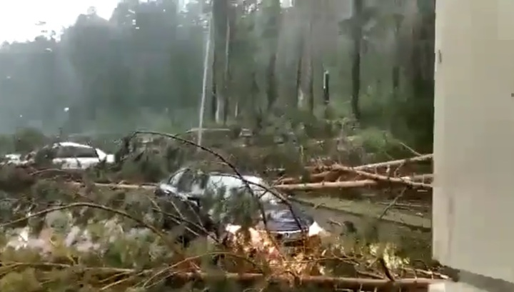 Разрушительный ураган в Алтайском крае сняли на видео