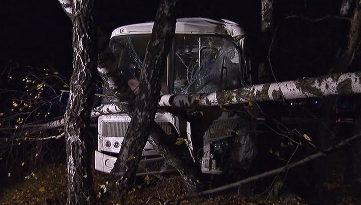 Под Псковом экскурсионный автобус съехал в кювет, пострадали 9 человек