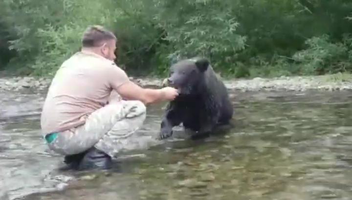 Житель Сахалина покормил с руки дикого медведя и остался цел