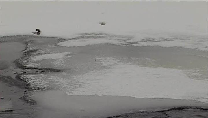По пояс в воде: в Зеленогорске рыбаки попали в ловушку из-за сброса на ГРЭС