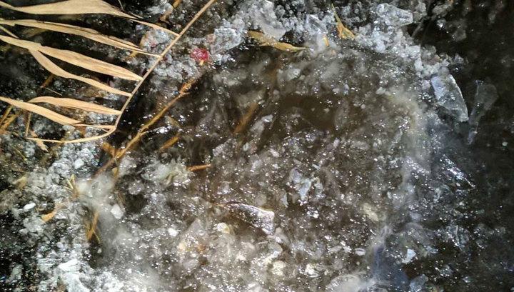 Под Саратовом нашли вмерзшего в лед младенца