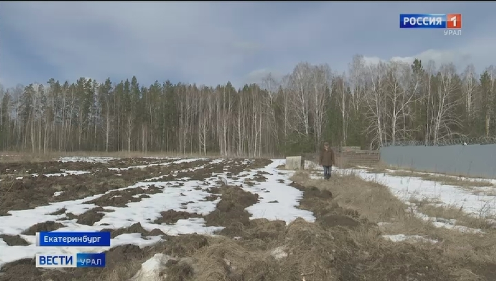 Посевная в Свердловской области может начаться раньше срока
