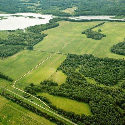 «Дальневосточный гектар» может стать доступным для соотечественников за рубежом