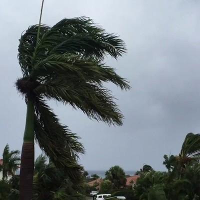 В результате урагана