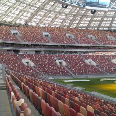 Болельщики матча Россия-Бразилия получат бейджи со схемой выхода со стадиона