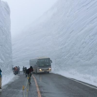 Из-за сильных снегопадов в Японии не менее двух человек, 16 получили травмы