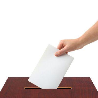 Кандидат от ЛДПР Владимир Сипягин победил на выборах главы Владимирской области с 57% голосов
