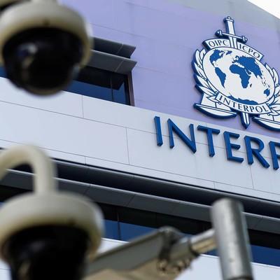 Интерпол предупредил о финансовом мошенничестве вокруг коронавируса