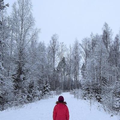 Несколько подростков заблудились в национальном парке