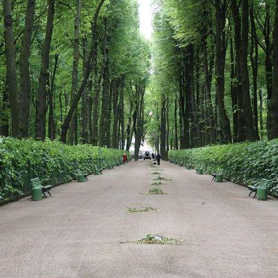 В Петербурге сады и парки закрывают на весеннюю просушку