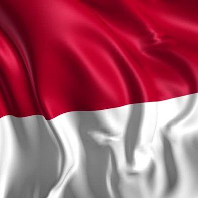 Число пострадавших при протестах в Джакарте превысило 900 человек