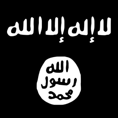 Россияне, примкнувшие к ИГИЛ, перед их возвращением на родину должны пройти предварительную фильтрацию