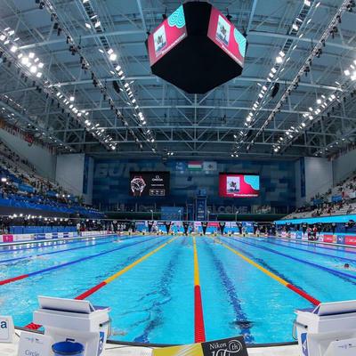 Несколько медалей завоевали российские пловцы на ЧМ по водным видам спорта