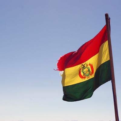 Суд Боливии подтвердил законность перехода президентской власти