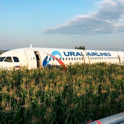 Работы по сливу топлива и разборке аварийно севшего самолета завершат до 26 августа