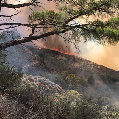 На острове Гран-Канария спасатели эвакуировали около 2 тысяч человек из-за пожара