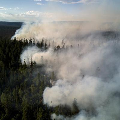 В Бурятии горят национальный парк и заповедник