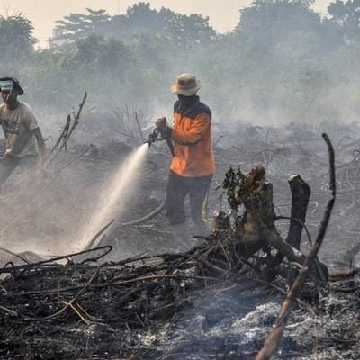 Полторы тысяч школ закрылись в разных частях Малайзии из-за природных пожаров