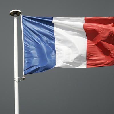 Франция заявила о заинтересованности в доступе к вакцинам из России и других стран