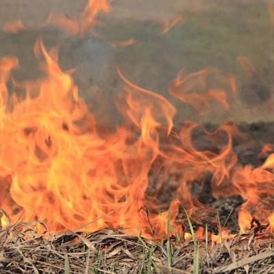 Крупный пожар в цыганском поселке под Самарой распространился на поле