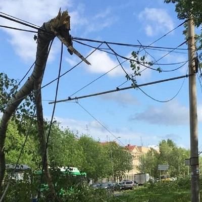 Мэр Екатеринбурга заявил, что город оправился от последствий урагана