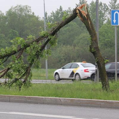 В Петербурге сотрудники коммунальных службустраняют последствия сильного дождя