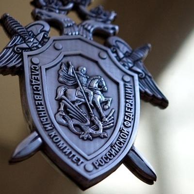 СК Башкирии прокомментировали резонанс вокруг Владимира Санкина