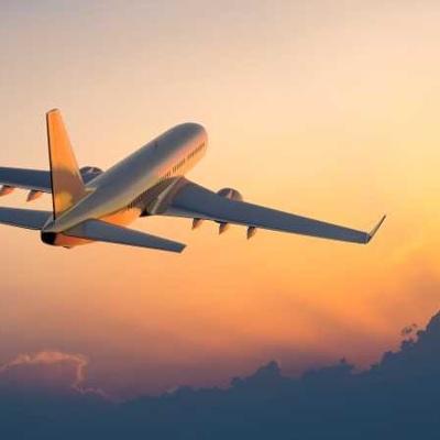 Самолет Варадеро-Москва столкнулся со стаей птиц на ВПП