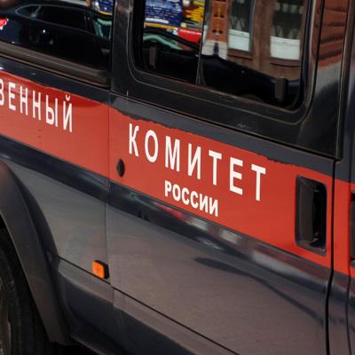 Спасатели нашли тела двух детей, провалившихся под лед в поселке Горный