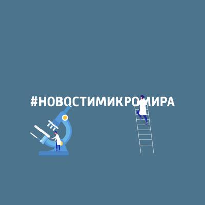 #новостимикромира