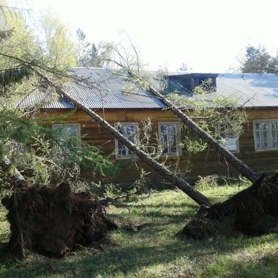 В Тверской области человек погиб из-за урагана