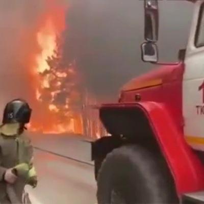 Военные привлечены к тушению лесных пожаров в Тюменской области