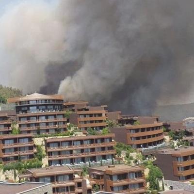 В районе турецкого Бодрума возник новый лесной пожар, 3 отеля эвакуируют