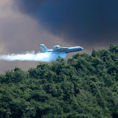Турецкие пожарные смогли локализовать большинство очагов лесных пожаров