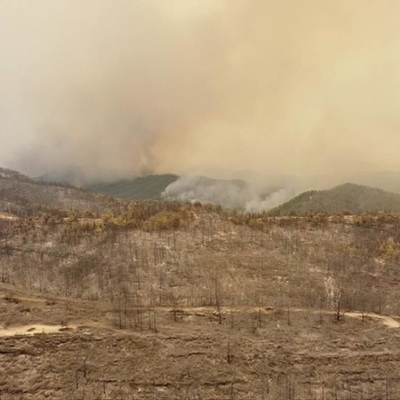 Более ста лесных пожаров локализовано в Турции