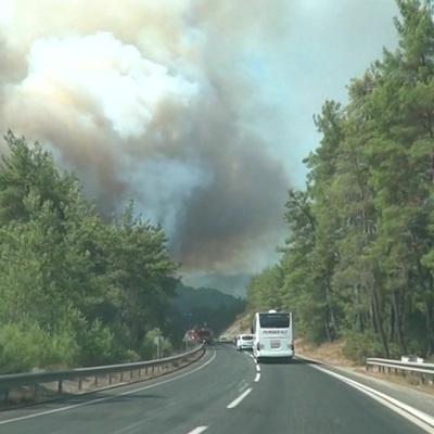 Турция запросила помощь ЕС в тушении лесных пожаров