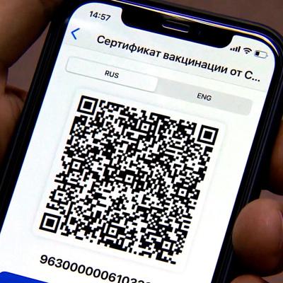 QR-коды для посещения учреждений культуры и спорта вводят в Забайкальском крае с 25 октября