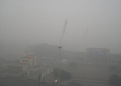 Новосибирская область: жители жалуются на дым от лесных пожаров