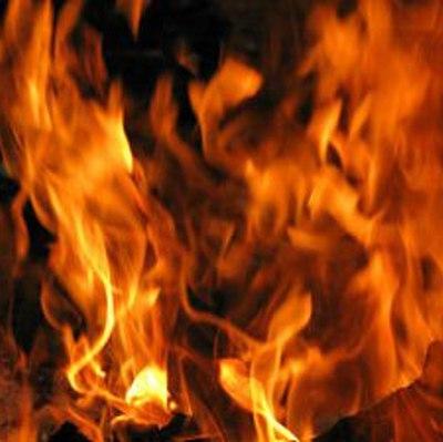 Крупный пожар под Ростовом-на-Дону
