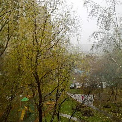 Первый за эту осень мокрый снег с дождём начался в Москве минувшим вечером