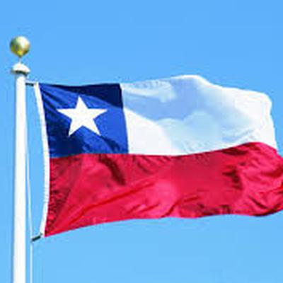 В Чили пройдут президентские и парламентские выборы