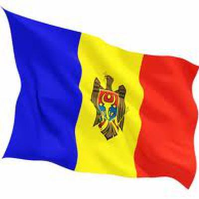 Демпартия Молдавии возвращается к работе в парламенте
