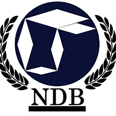 Банк БРИКС одобрил выделение кредитов по пяти новым проектам