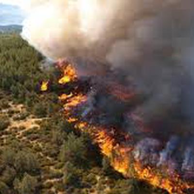 В Сибири спасатели продолжают борьбу с лесными пожарами