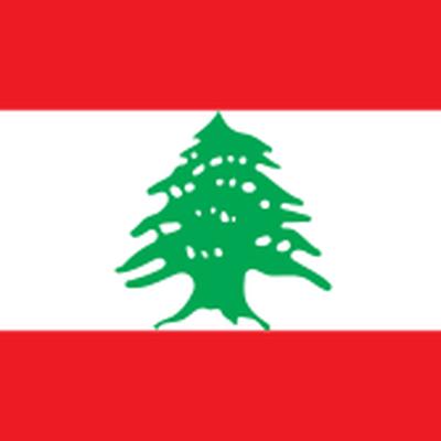 Свою солидарность с народом Ливана выражают во всем мире