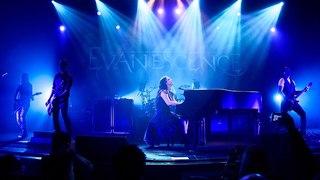 группа Evanescence / Justin Higuchi / CC BY 2.0