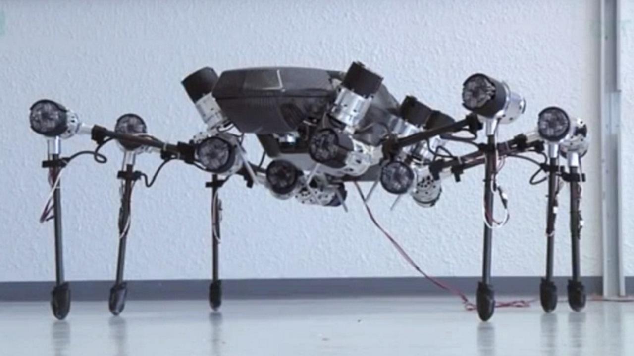 Шестилапого робота научили передвигаться, как ловкое насекомое