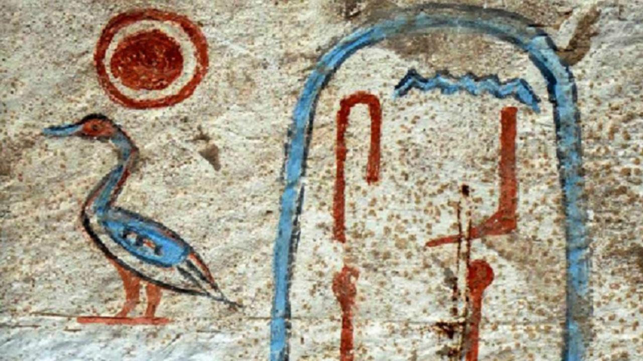Сводки с полей 2014: самое интересное из истории, антропологии и палеонтологии