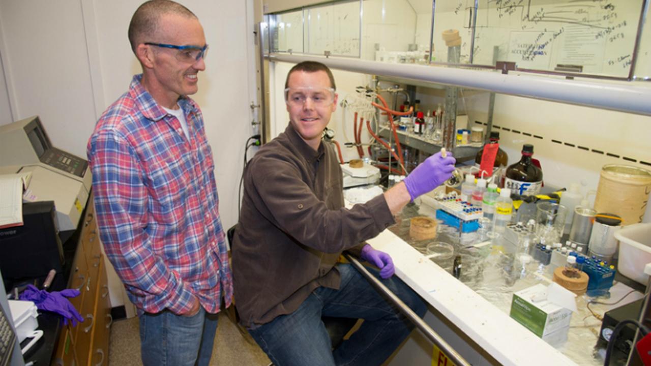 Из одного вида водорослей получены две разновидности биотоплива