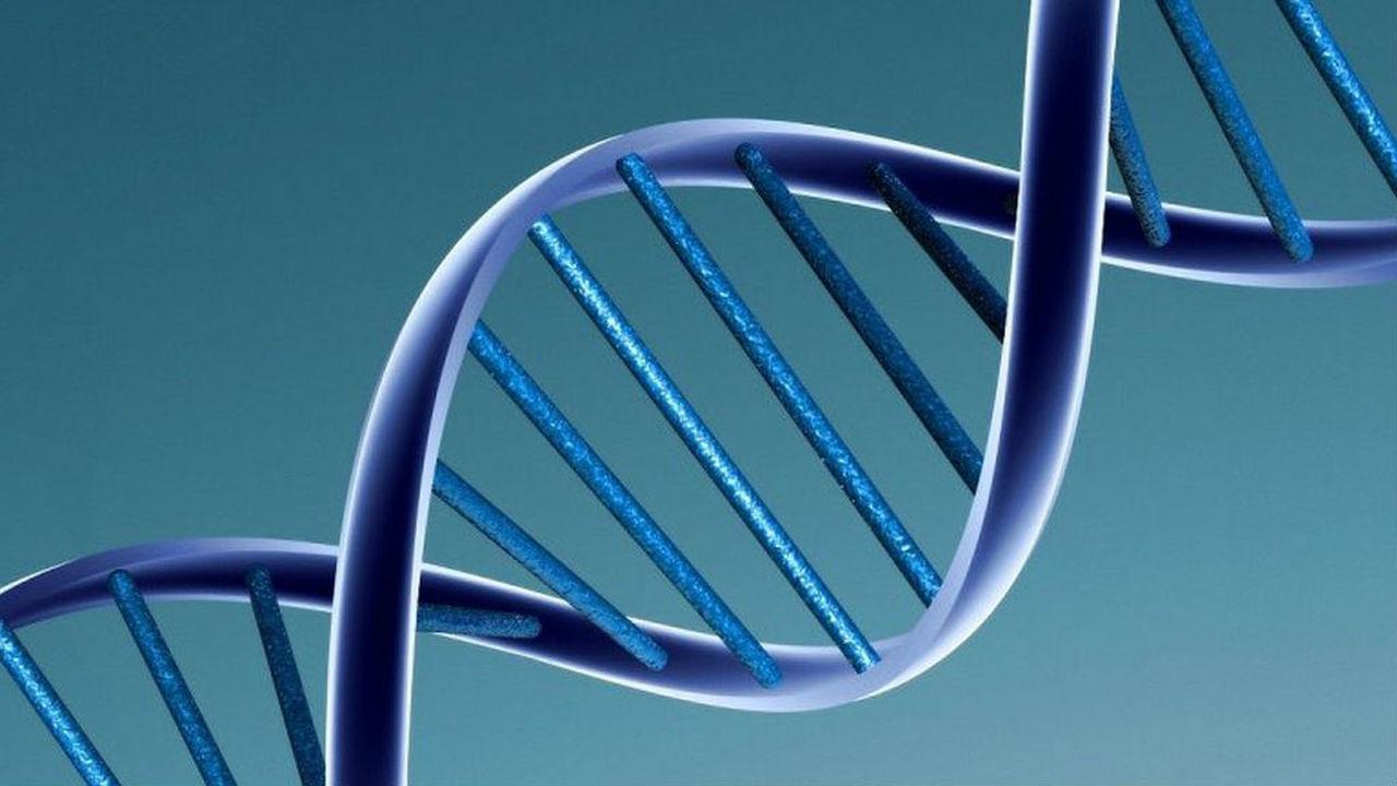 Вирусная ДНК в геноме человека помогает бороться с патогенами